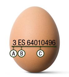 Código huevo
