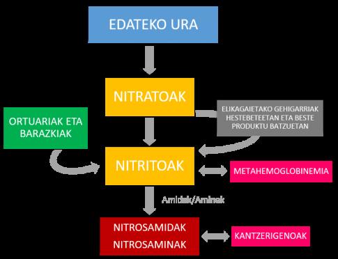Nitratoak eta nitritoak hartzeko bideak eta izan ditzaketen eragin toxikoak